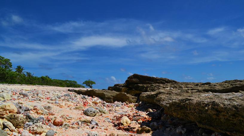 temwaiku ocean side 1